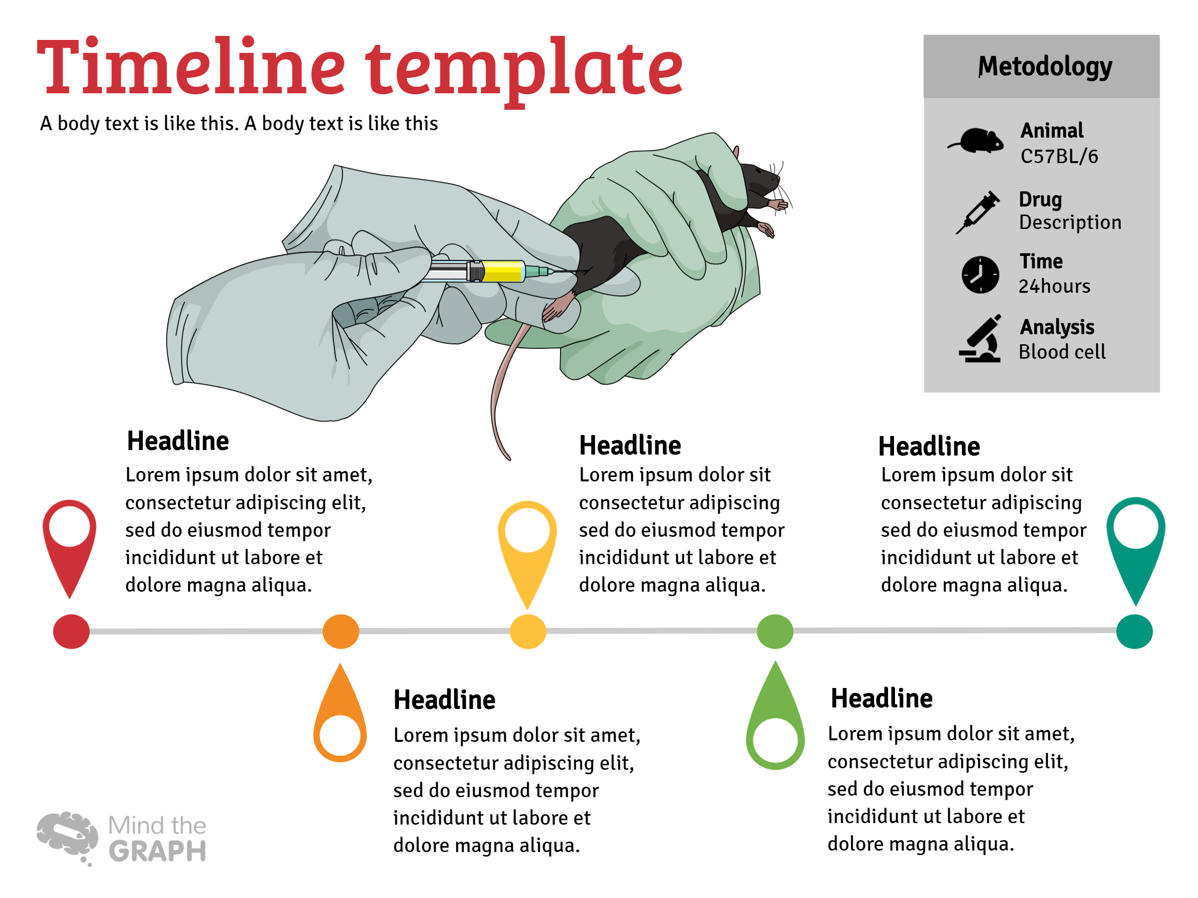 infographic template infographic layout mind the graph